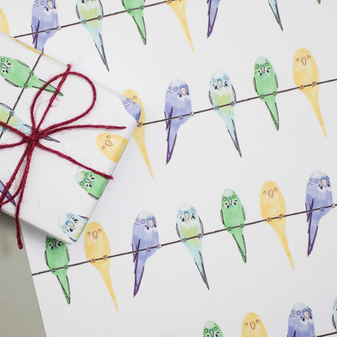 budgie design gift wrap sheet
