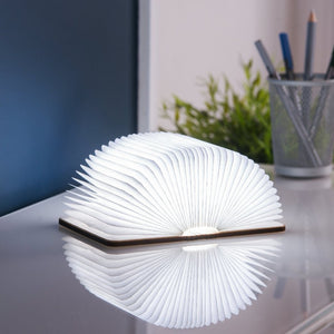 Maple smart book light large