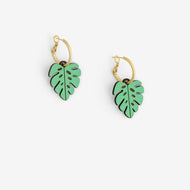 Walnut Lazer cut green Monstera Leaf earrings on gold colour hoop