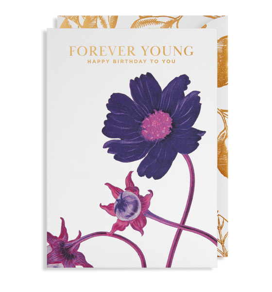 purple flower forever young happy birthday card