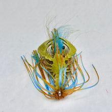 Load image into Gallery viewer, Jiggy Craw - Olive