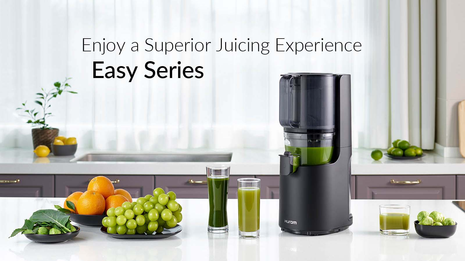 Hurom H200 Easy Series Cold Press Slow Juicer