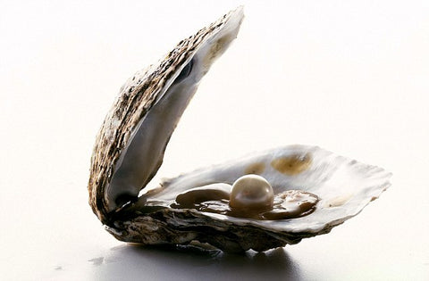 Beautiful pearl inside of an oyster shell