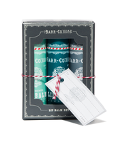 Load image into Gallery viewer, Barr-Co. Cool Lip Balm Gift Set