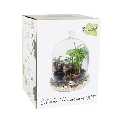 Syndicate Home & Garden® Glass Cloches Terrarium Kit
