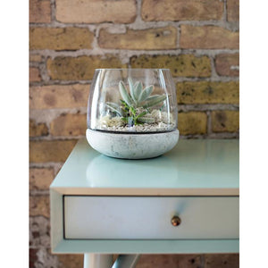 Syndicate Home & Garden® Mixed Material Terrarium Cement & Glass