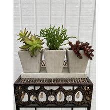 Load image into Gallery viewer, Syndicate Home & Garden Trio Garden Planter DIY Kit