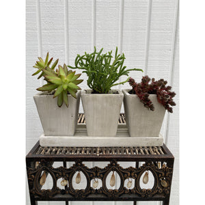 Syndicate Home & Garden Trio Garden Planter DIY Kit
