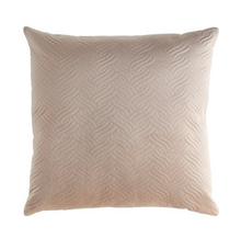 Load image into Gallery viewer, Ellery Velvet Pillow