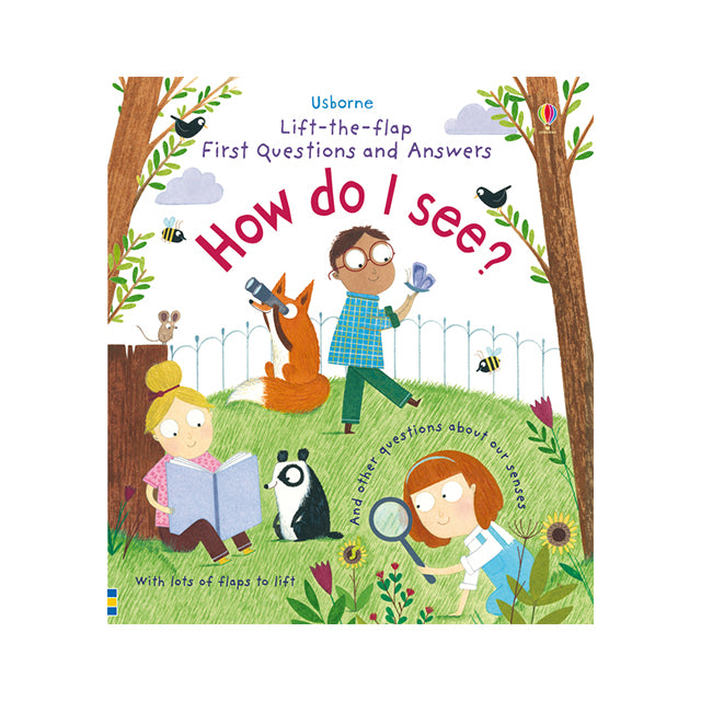 Usborne Lift-the-Flap First Questions and Answers: How Do I See?