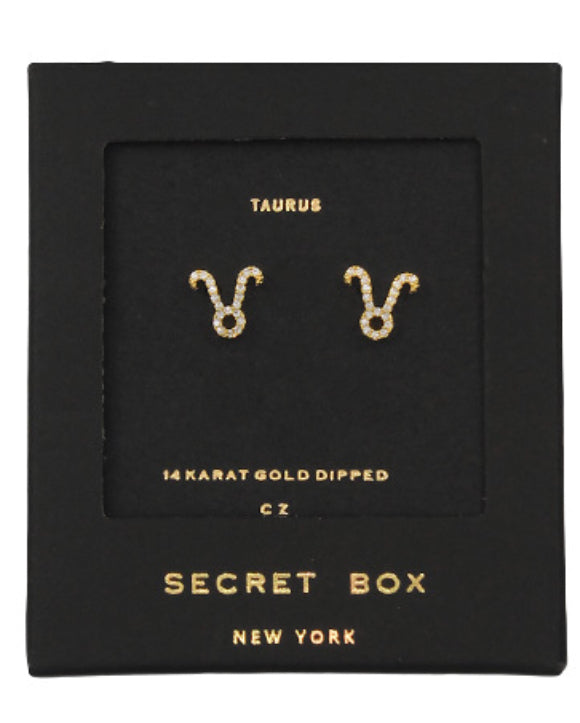 Taurus Earrings Sign