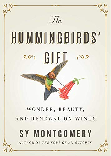 Hummingbirds' Gift: Wonder, Beauty, and Renewal on Wings