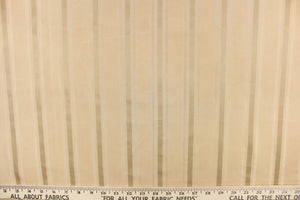 Williamsburg© Spotswood Stripe Porcelain