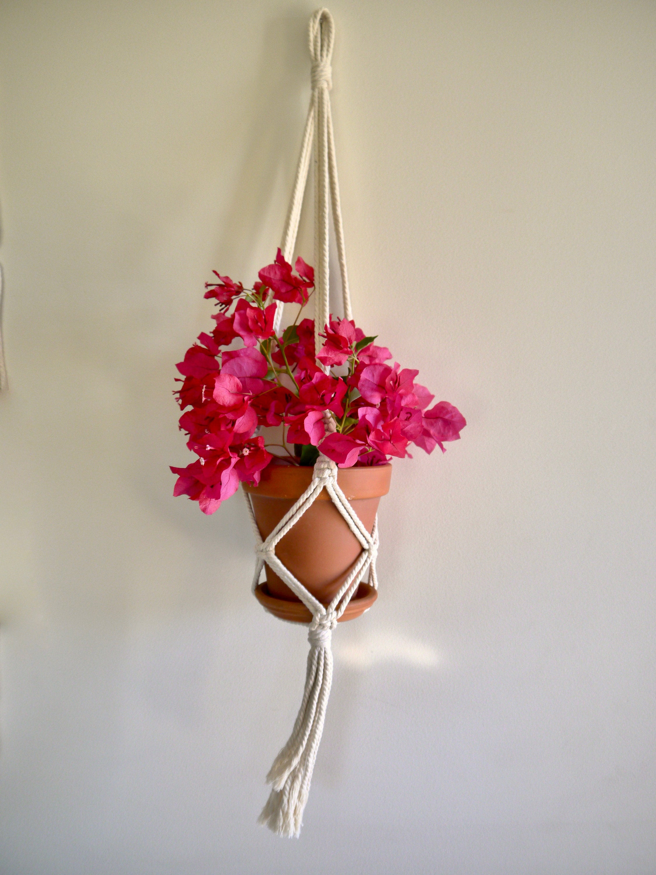 Classic Single Macramé Hanger