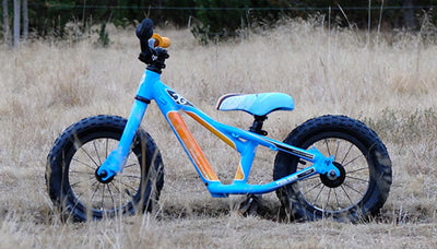 "Mini ""CG"" the balance bike for kids… but not only!"