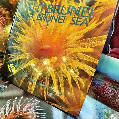 Laut Brunei: The Brunei Sea By Maurice Davidson