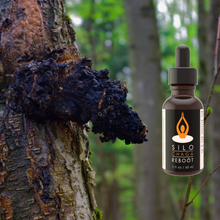 Load image into Gallery viewer, Chaga Mushroom and extract