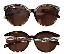 Load image into Gallery viewer, BRIGHTON Sydney Sunglasses