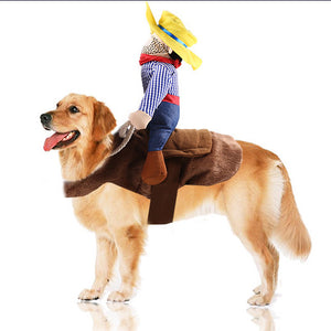 Dog cat costume cowboy knight