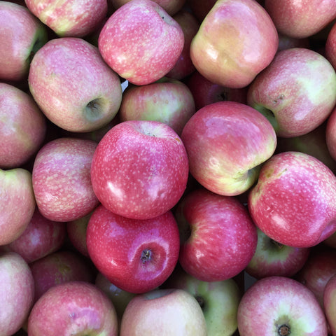 Organic Apples Pink Lady 1kg - Gold Coast Organics Home Delivery