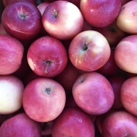 Gold Coast Organics Home Delivery Apples Fuji 1kg - Gold Coast Organics Home Delivery
