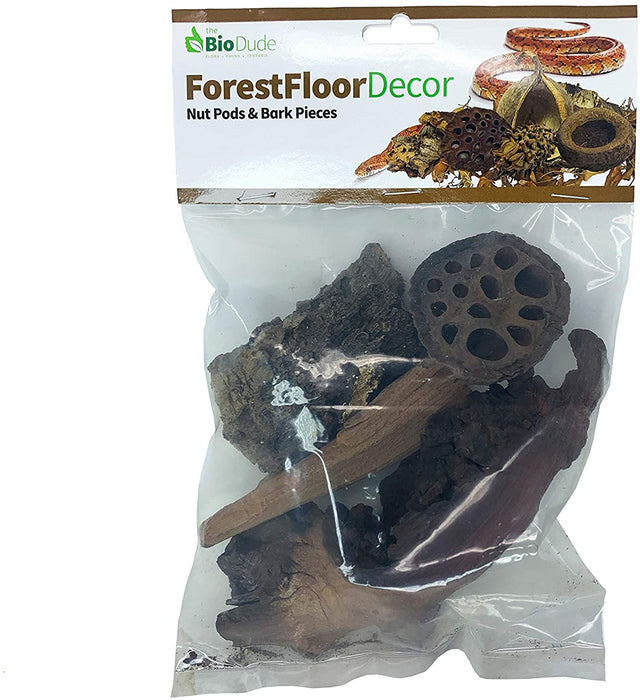 BioDude Forest Floor Decor