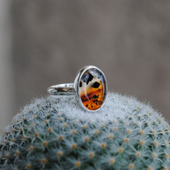 RESERVED: Montana Agate Ring