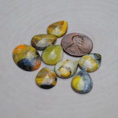 Bumble Bee Jasper Cabs