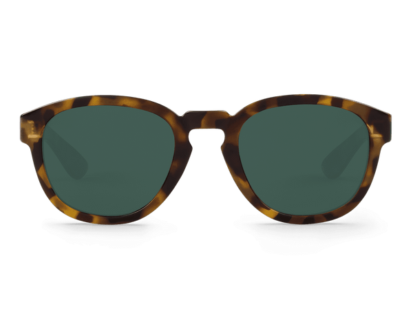 HC TORTOISE - PECKHAM - WITH CLASSICAL LENSES