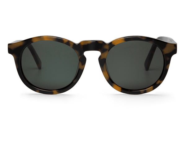 HC TORTOISE - JORDAAN - WITH CLASSICAL LENSES