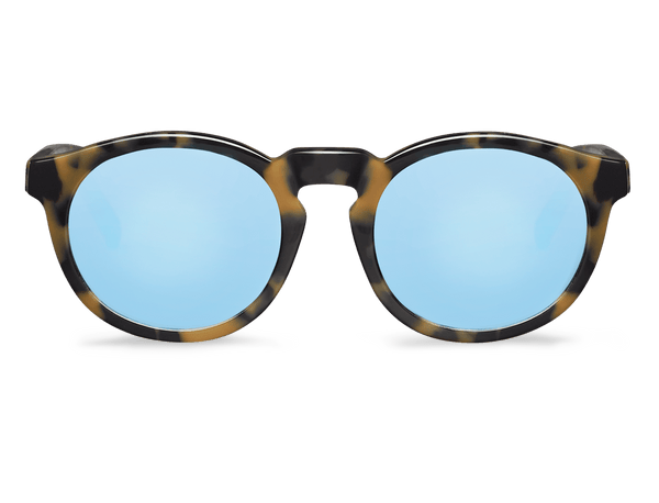 HC TORTOISE - JORDAAN - WITH SKY BLUE LENSES