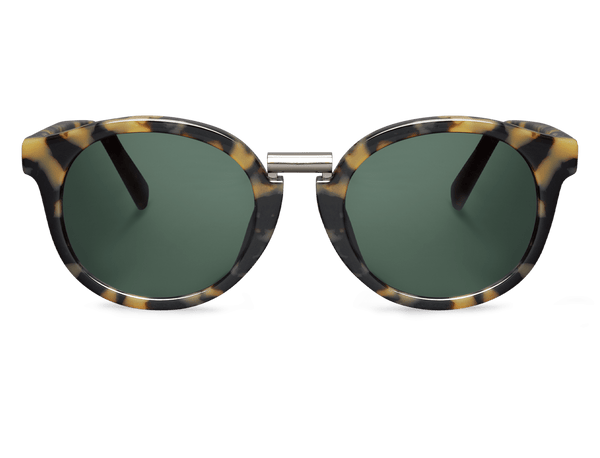 HC TORTOISE - FITZROY - WITH CLASSICAL LENSES