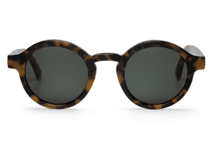 HC TORTOISE - DALSTON - WITH CLASSICAL LENSES