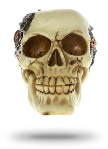 Decorative Skull Carved