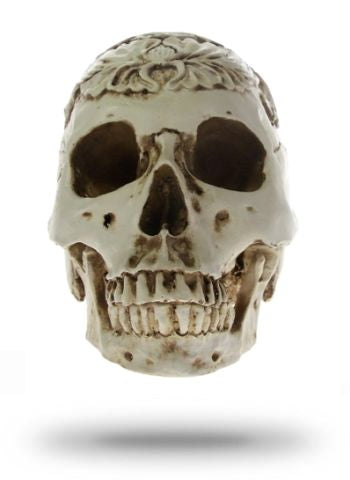 Decorative Skull Mexico