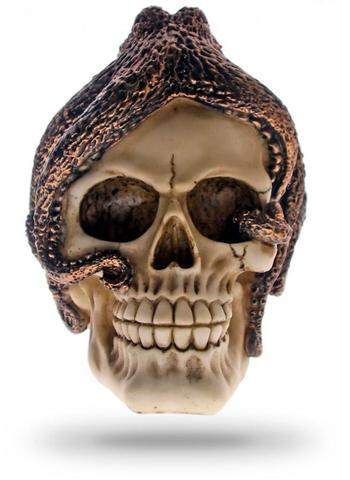 Decorative Wall Skull