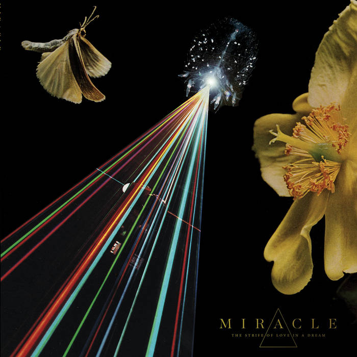 Miracle - Strife Of Love In A Dream (Vinyle Neuf)
