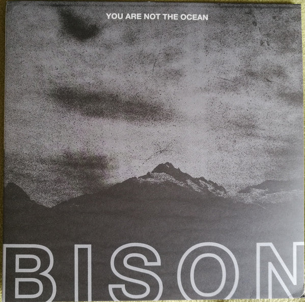 Bison - You Are Not The Ocean (Vinyle Neuf)