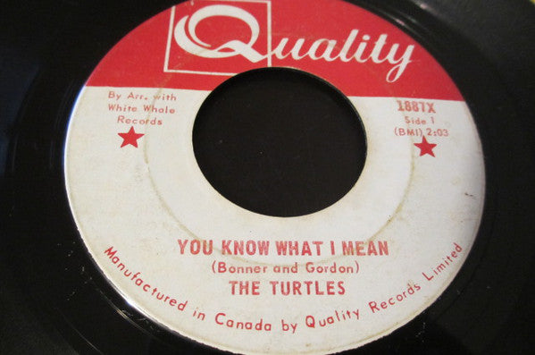 The Turtles - You Know What I Mean (45-Tours Usagé)