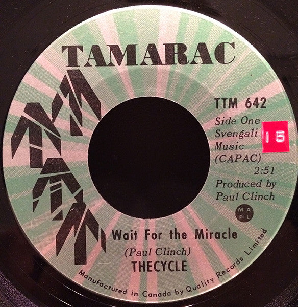 The Cycle - Wait For The Miracle (45-Tours Usagé)