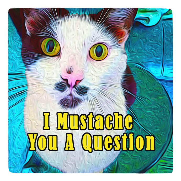 The Dapper Cat Mustache You A Questions - Sir Nibbler - Meme Magnet personalized gifts custom gift idea Expanded Perspective