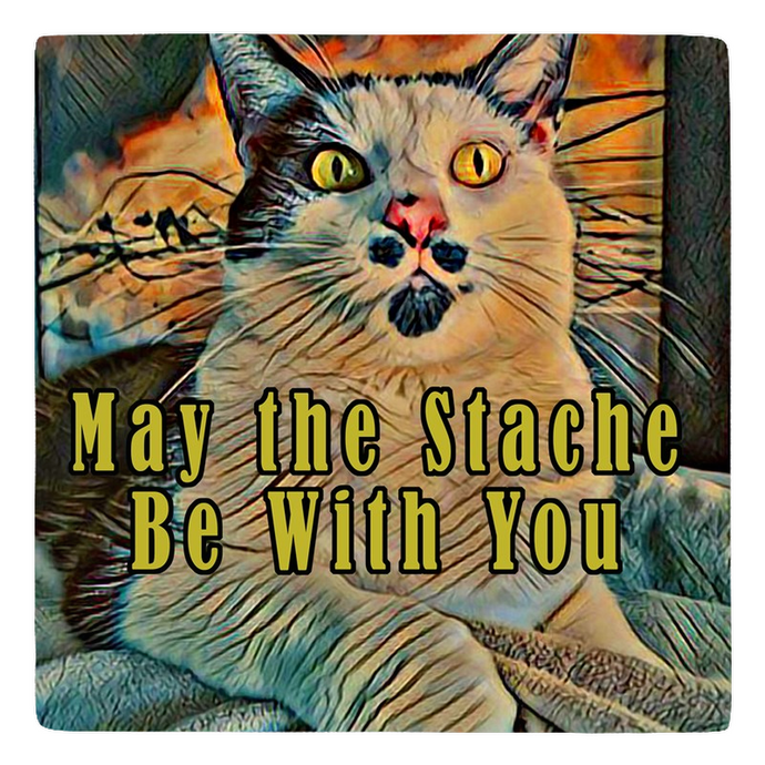 May the Stache Be With You - Sir Nibbler - Meme Magnet personalized gifts custom gift idea Expanded Perspective