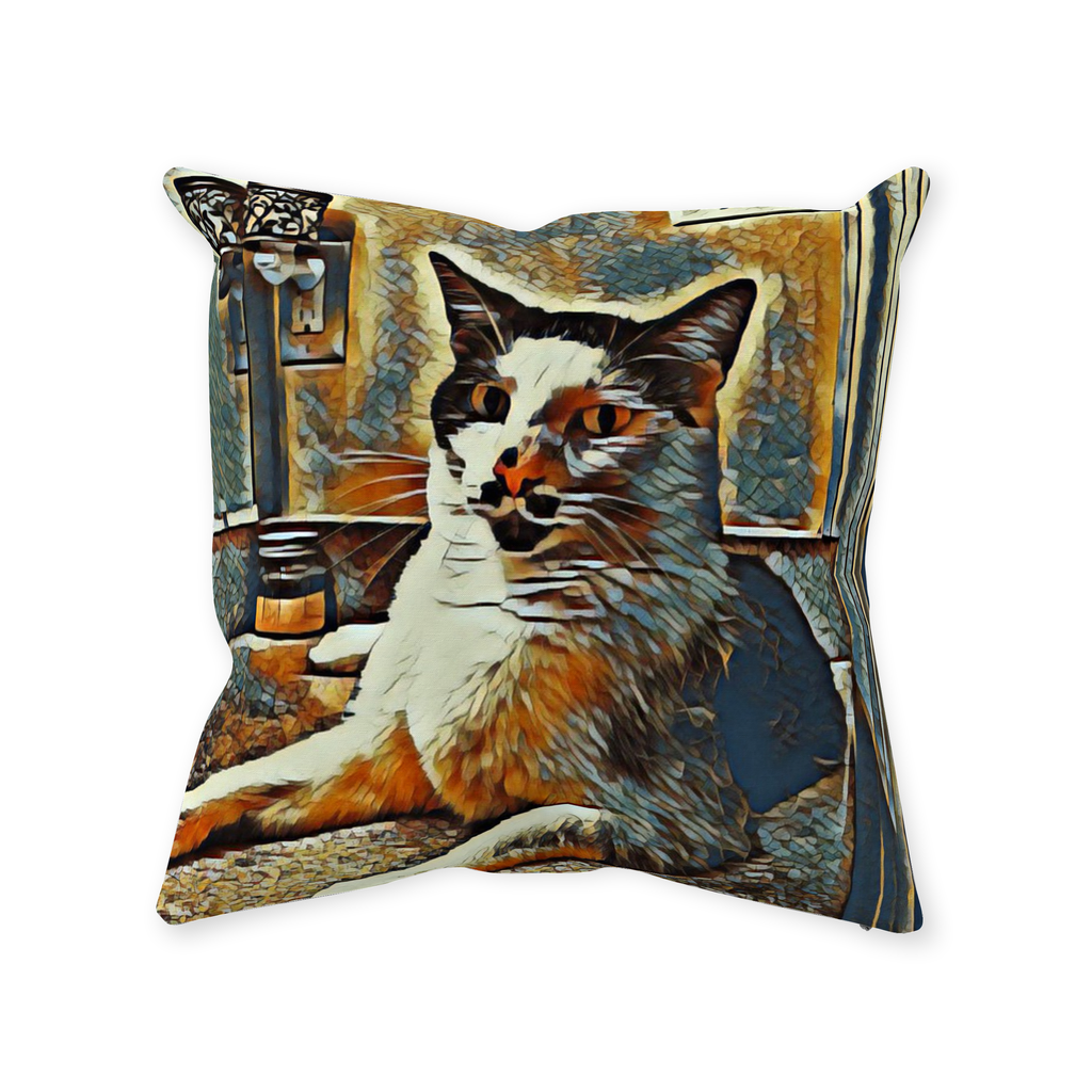 The Most Interesting Cat in the World Throw Pillow - Couch Pillow - Sir Nibbler personalized gifts custom gift idea Expanded Perspective