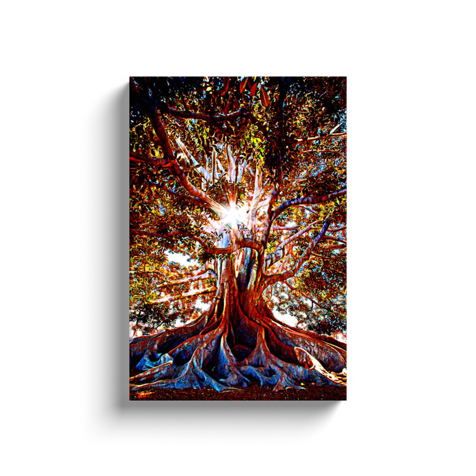 Tree of Life Canvas Print - Wall Art - Decor - Graphic Art personalized gifts custom gift idea Expanded Perspective