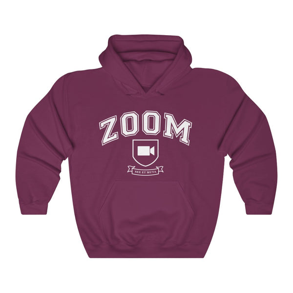 Zoom University hooded sweatshirt - Work From Homers
