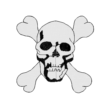 Bones Skull Embroidered Patch
