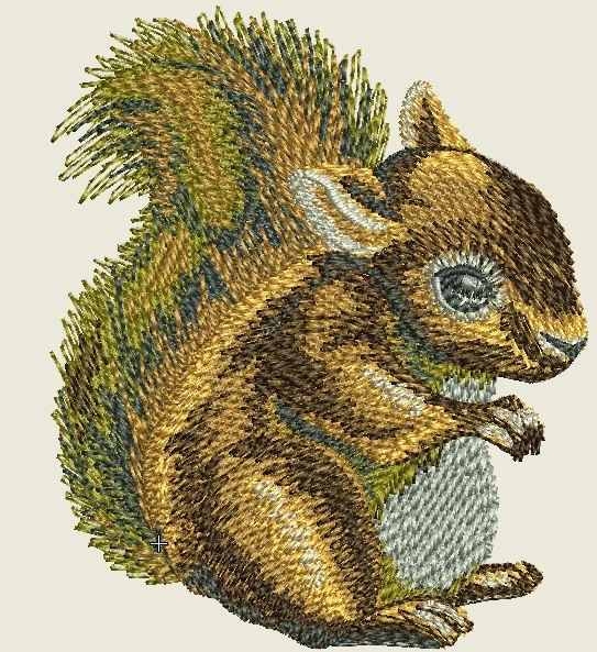 Baby Squirell Embroidered Patch - EH Patches