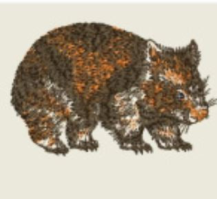Wombat Embroidered Patch - EH Patches