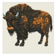 Large Wild Buffalo Embroidered Patch - EH Patches