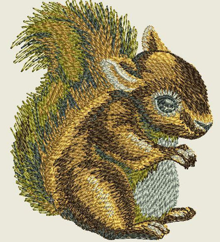 Squirrel Embroider Iron On Patch - EH Patches